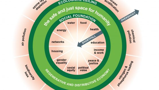 Doughnut economics: a new way of thinking about the development of cities?